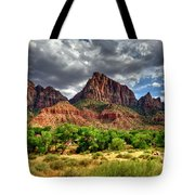 Storm Brewing In Desert Tote Bag