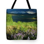 Storm In Dillon Tote Bag