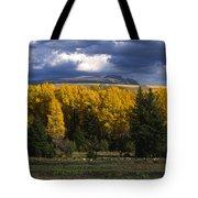 Storm Over Sleeping Indian-grand Tetons Tote Bag