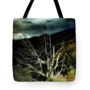 Storm Over The Jemez Mountains Tote Bag
