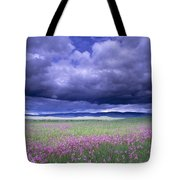 Stormy Clouds Approaching Field Of Tote Bag