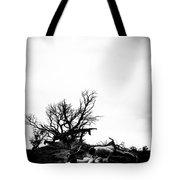 Stormy Pushups Tote Bag