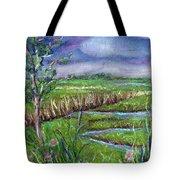 Stormy Wetlands Tote Bag