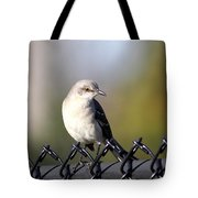 Straddling The Fence Tote Bag