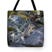 Straight Tailed Chipmunk On A Rock Tote Bag