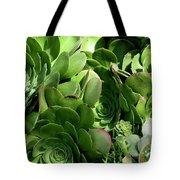 Strand Succulent Tote Bag