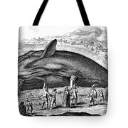 Stranded Whale, 1577 Tote Bag