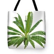 Strange Banana Tree Tote Bag