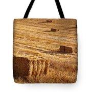 Straw Field Tote Bag