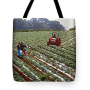 Strawberry Farm Tote Bag