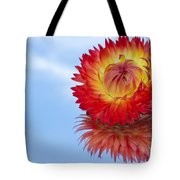 Strawflower Reflection Tote Bag