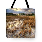 Straws And Sunset Tote Bag