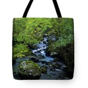 Stream Flowing Through A Forest Tote Bag