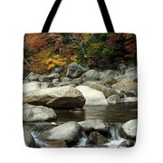 Streamside Color Tote Bag