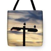 Street  Light Perch Tote Bag