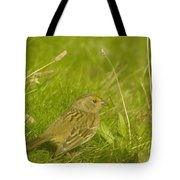Stretching The Wings  Tote Bag