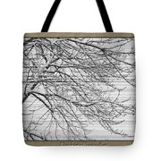Striations Tote Bag