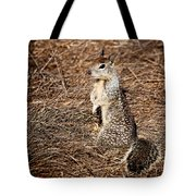 Strike A Squirrelly Pose Tote Bag