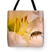 Striped Beetle On Lilly 1 Tote Bag