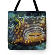 Striped Burrfish On Caribbean Reef Tote Bag