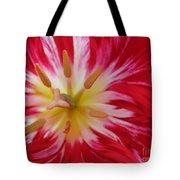 Striped Flaming Tulips. Hot Pink Rio Carnival Tote Bag