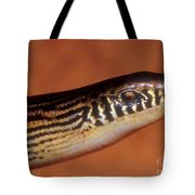 Striped Lateral Fold Lizard Tote Bag