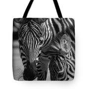 Stripes - Zebra Tote Bag