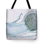 Strobilus On Horsetail Plant Tote Bag