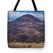 Studies In Sugarloaf Peak 4 Tote Bag