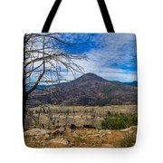 Studies On Sugarloaf Peak 1 Tote Bag