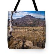 Studies On Sugarloaf Peak 3 Tote Bag
