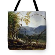 Study From Nature - Stratton Notch Tote Bag