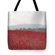 Study In Red And Grey Tote Bag