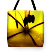 Study Of A Golden Cup Flower 5 Tote Bag