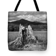 Stump In A Field Tote Bag