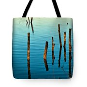 Submerged Trees At Sunset Tote Bag