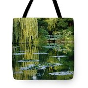 Subtle Light And Shade Reveal Tote Bag