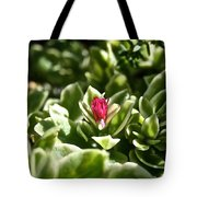 Succulent's Ruby Tote Bag