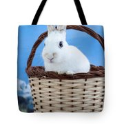 sugar the easter bunny 3 - A curious and cute white rabbit in a hand basket  Tote Bag
