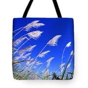 Sugarcane Tote Bag