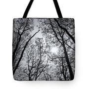Sugarloaf Tote Bag