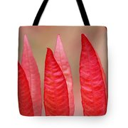Sumac Leaves Rhus Coriaria In Fall Tote Bag by Mike Grandmailson