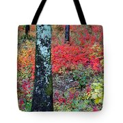 Sumac Slope And Lichen Covered Tree Tote Bag