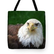 Summer Bald Eagle  Tote Bag