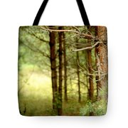 Summer Forest. Pine Trees Tote Bag by Jenny Rainbow