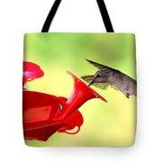 Summer Fun Hummingbird Tote Bag