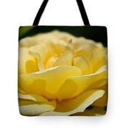 Summer Loves A Rose Tote Bag
