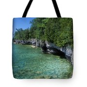 Summer Morning At Cave Point Tote Bag