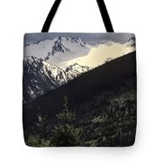 Summer Or Fall Tote Bag