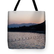Summer Palace Serenity Tote Bag by Mike Reid
